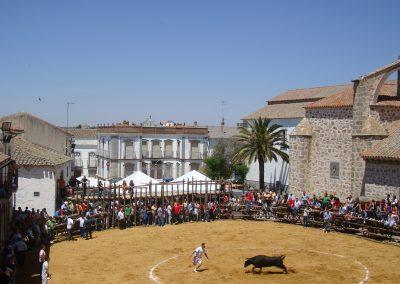 Vaca de San Isidro