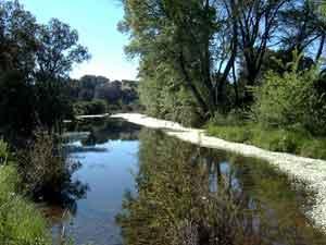 rio cuzna